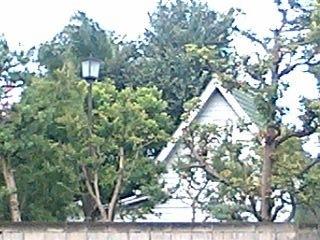 Saeki20060907.JPG